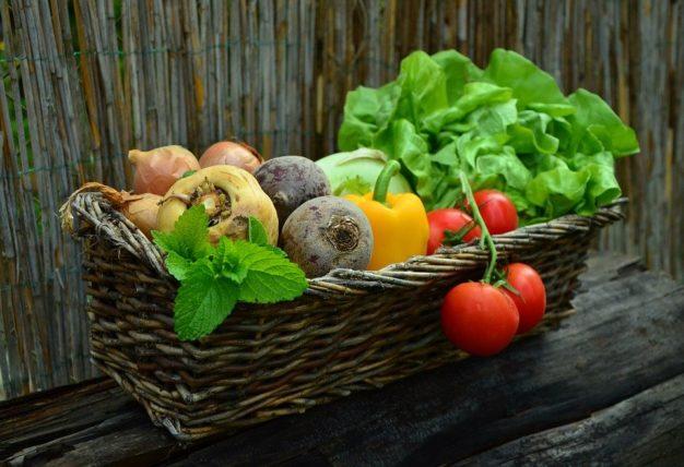 栄養満点な野菜の写真