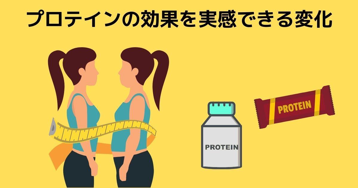 プロテインの効果を実感できる効果とは?