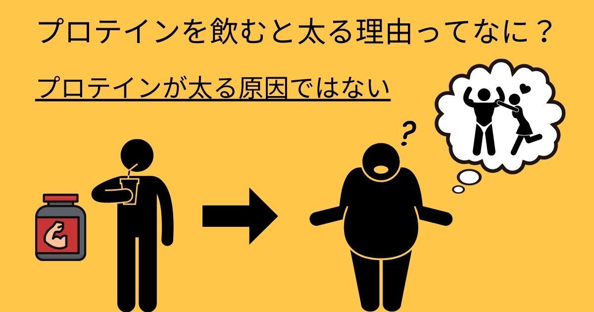 プロテインを飲むと太る理由ってなに?