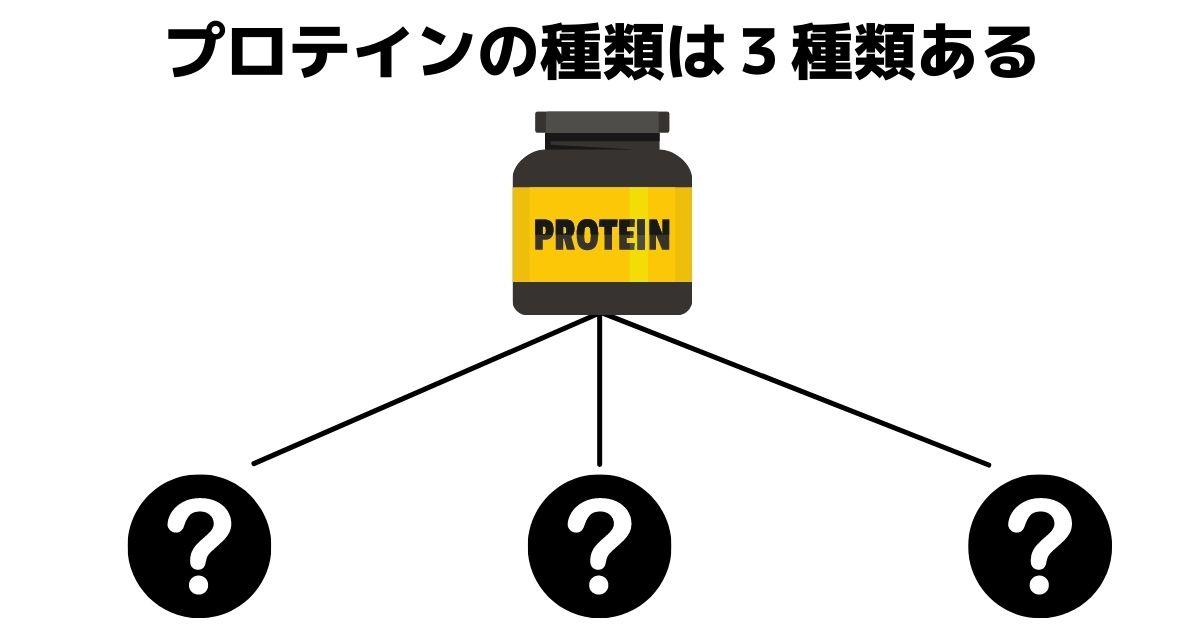 プロテインの種類は3種類ある
